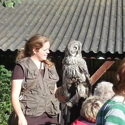 Kinderfeestje Falconcrest Valkerij Centrum en Roofvogelpark